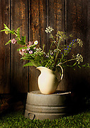 Still life Wildflowers in rustic pitcher against barnwood