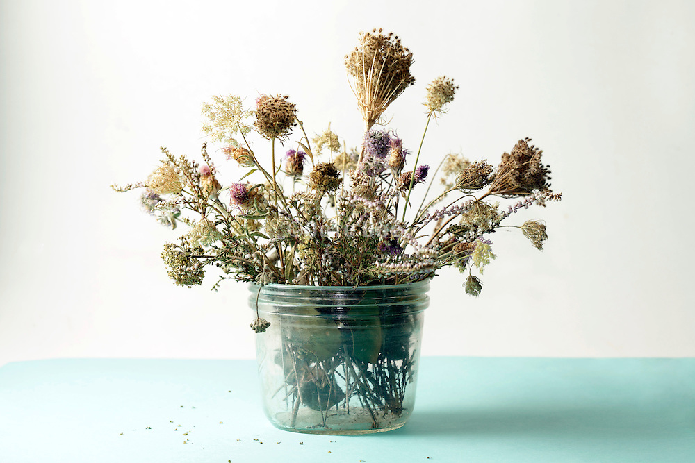 still life of various dried wild field flowers and grasses