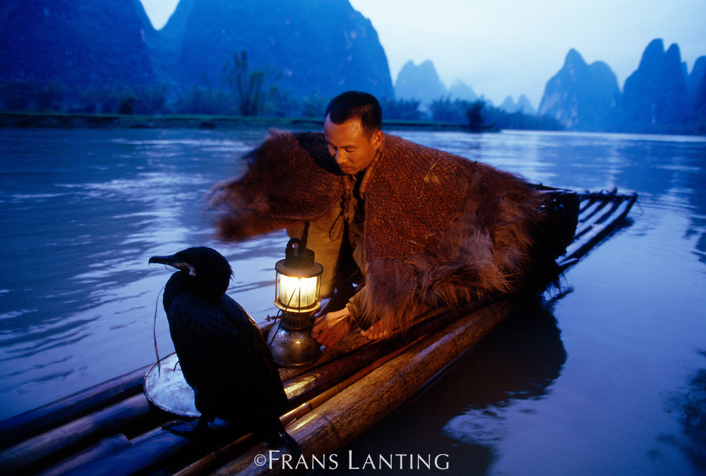 Cormorant fisherman, Guilin, China