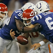 Kansas City Chiefs quarterback Trent Green was trapped in a sack sandwich between Indianapolis Colts defensive end Robert Mathis, left, and defensive end Bo Schobel, right, in the fourth quarter where Green fumbled the football away in the 23-8 loss to the Colts Saturday, January 6, 2007 in the AFC  Wild Card playoff game at the RCA Dome in Indianapolis, IN.