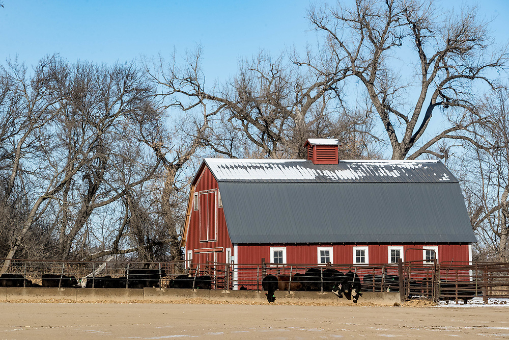 An old barn is still in use along the Missouri River north of Mandan, ND, on Monday, Feb. 5, 2018.