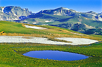 The Beartooth Plateau has numerous alpine tarns scattered across the alpine tundra.   Notice the Beartooth in the distance.   Beartooth Mountains, Wyoming.