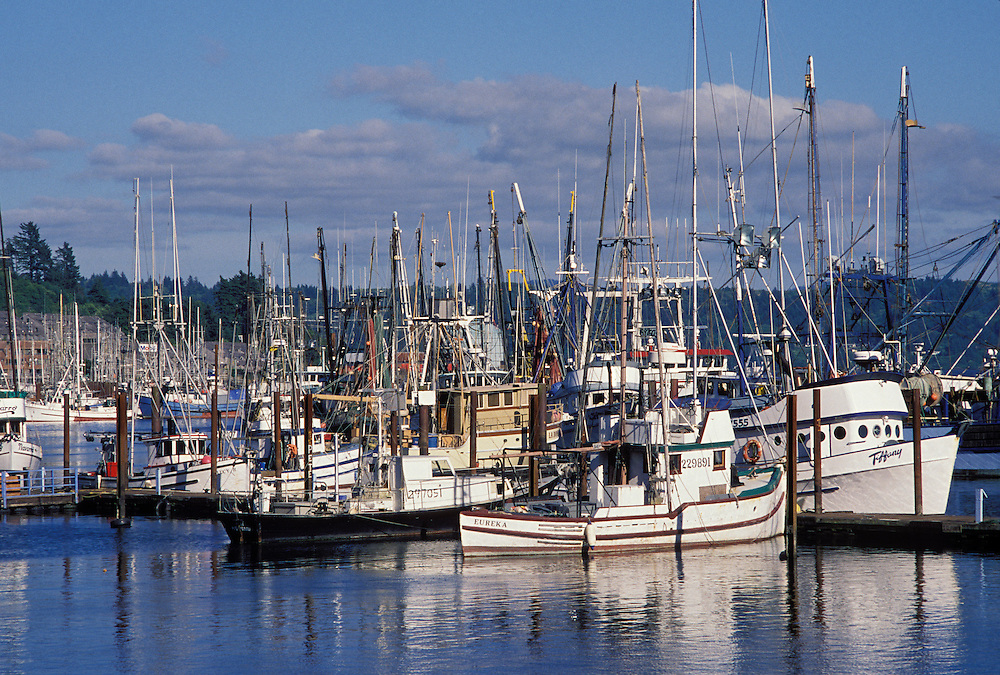Fishing boats at harbor docks in Yaquina Bay, Newport, central Oregon coast.