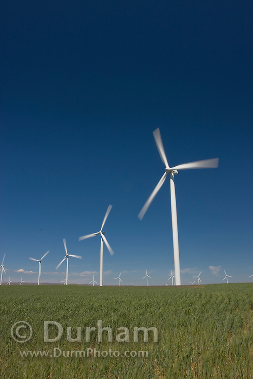 Portland General Electric's Biglow Wind Farm near the Columbia River in Oregon.