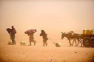 Tørke i Kenya, Afrikas horn. I det Nordøstlige område har det ikke i 4 år og alt er knas tørt, vandhullerne er tørret ud og folk må bruge alt deres energi på at skaffe vand. Nomadefolket der lever i det nordøstlige Kenya har mistet næsten alle deres geder, kvæg og kameler, som er døde som følge af tørken. Der er ingen græs eller anden mad til dyrene tilbage og vandressourserne sparsomme. Det er dyr som er livsvigtige for nomaderne, da det er alt hvad de ejer og har og uden dyr bliver livet svært og de kan ikke længere skaffe mad selv. I Hadado  flokkes en voksnede befolkning og de to vandtrug, så deres dyr kan få lidt vand og de kæmper for at få deres gule dunke fyldt op med vand. Byen ligger midt i et område som mest ligner en ørken og alt er sandet til og hele tiden kommer der små hvivel vinde der blæser sandet rundt i luftet. Sandstorm