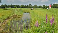 UTRECHT - Golfclub Amelisweerd.  hole 8. COPYRIGHT KOEN SUYK