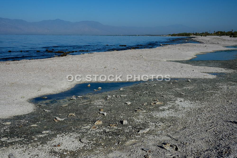 Desolate Salton Sea