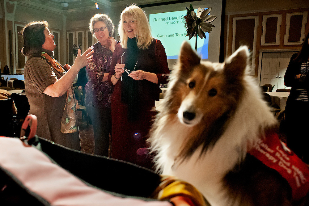 """Christine Lafferty (right) Amy Whitney (center) and Erika Capobianco (left)  watch as her Almstel's  dog Layla sits next to the purses during the """"Power of the Purse"""" silent  auction at the Women in Philanthropy conference on Thursday, March 14th in Baker Ballroom. Also pictured is Emily Stern (far left). Photo by: Ross Brinkerhoff."""