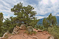 Garden of the Gods,Colorado Springs,Colorado