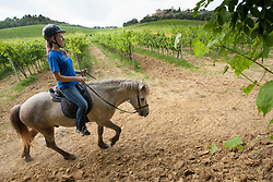 Europe, Italy, Tuscany, Volterra, Teenage girl horseback riding on Icelandic Ponies.  MR