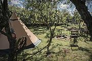 Mitt indiantält i trädgården