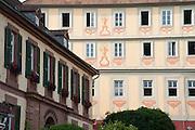Altes Schloss, Bad König, Odenwald, Naturpark Bergstraße-Odenwald, Hessen, Deutschland | old castle, Bad König, Odenwald, Hesse, Germany
