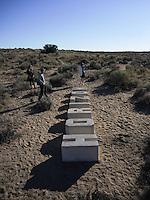 """High Desert Test Sites 2013. Scott Oliver """"A New Horizon"""" in Rio del Oro subdivision near Tome-Adelino, NM."""