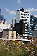 New York  the new park on the high line, in  Chelsea , The High Line is a 1.45-mile (2.33 km) section of the former elevated freight railroad of the West Side Line, along the lower west side of Manhattan, which has been redesigned and planted as a greenway.  New York - United states  Manhattan / la high line, le nouveau parc sur l'ancienne voie de train suspendu a Chesea  New York - Etats-unis