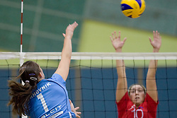 Petra Vrhovnik during volleyball match between Calcit Volleyball and A. Linz-Steg in Mevza league on October 23, 2010 at Sport Halli, Kamnik, Slovenia. (Photo By Matic Klansek Velej / Sportida.com)