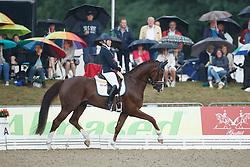Österholm Yvonne, (SWE), Quarton<br /> First Qualifier 6 years old horses<br /> World Championship Young Dressage Horses - Verden 2015<br /> © Hippo Foto - Dirk Caremans<br /> 07/08/15
