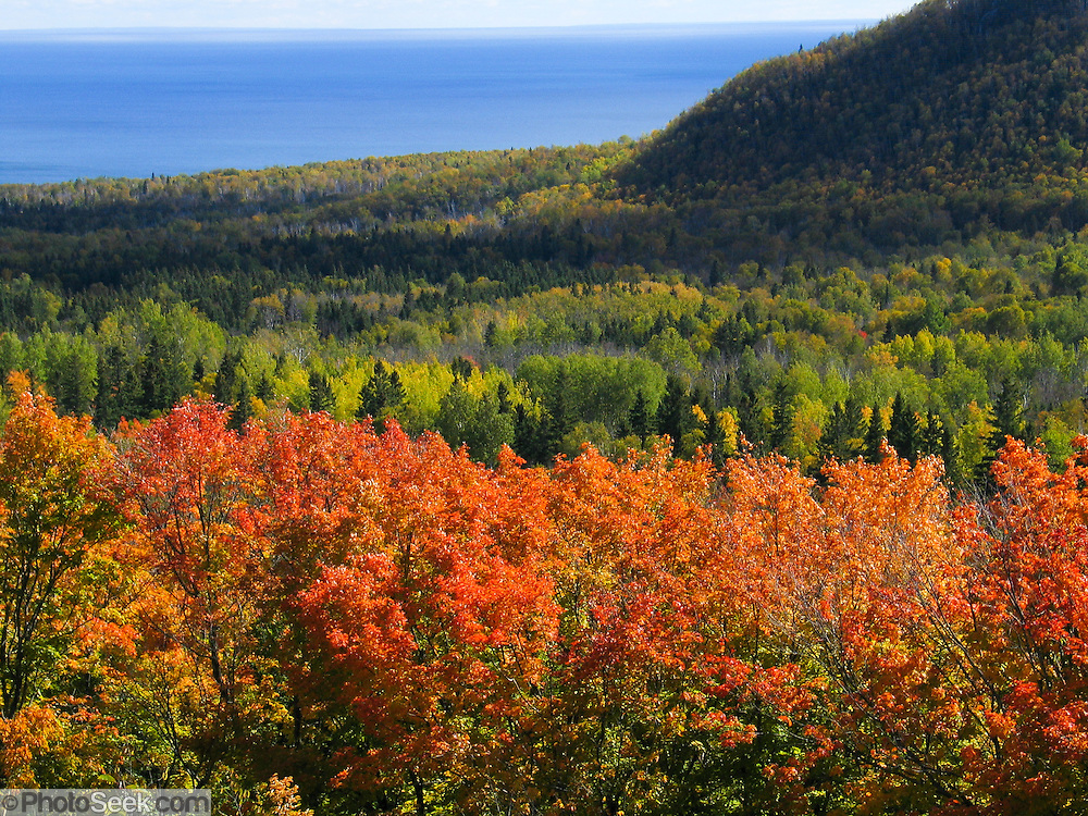Tree foliage changes from green to yellow, orange and red in late September in Superior National Forest, Minnesota, USA. Lake Superior (French: Lac Supérieur) is the largest of the five Great Lakes of North America.