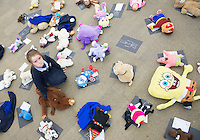 21/01/2016 Anna Duffy from Tooreney NS  at the 11th Annual Teddy Bear Hospital in NUI, Galway where Med students get used to dealing with kids and Kids get used to a hospital setting with their sick teddy bears.Photo:Andrew Downes