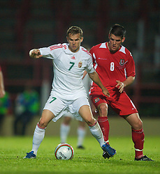 Wrexham, Wales - Wednesday, August 12th, 2009: Wales' Mark Bradley and Hungary's Vladimir Koman during the UEFA Under 21 Championship Qualifying Group 3 match at the Racecourse Ground. (Photo by Chris Brunskill/Propaganda)