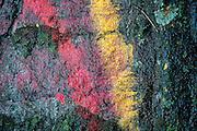 Painted rock surface at Hindu shrine. Dambetenna Estate, Dambetenna.