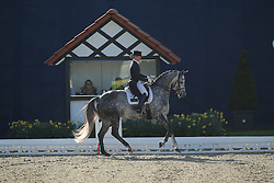 Moller Kristine, (LUX), Pequignet<br /> Nurnberger Burg-Pokal - St George Special<br /> Horses & Dreams meets Denmark - Hagen 2016<br /> © Hippo Foto - Stefan Lafrentz