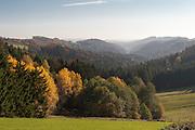 Ilztal, Bayerischer Wald, Bayern, Deutschland | Ilz valley, Bavarian Forest, Bavaria, Germany