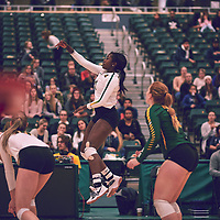 4th year outside hitter, Diana Lumbala (9) of the Regina Cougars during the Women's Volleyball home game on Thu Nov 15 at Centre for Kinesiology, Health & Sport. Credit: Arthur Ward/Arthur Images