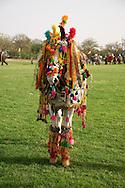 2012 Elephant Festival, Jaipur, Rajasthan, India