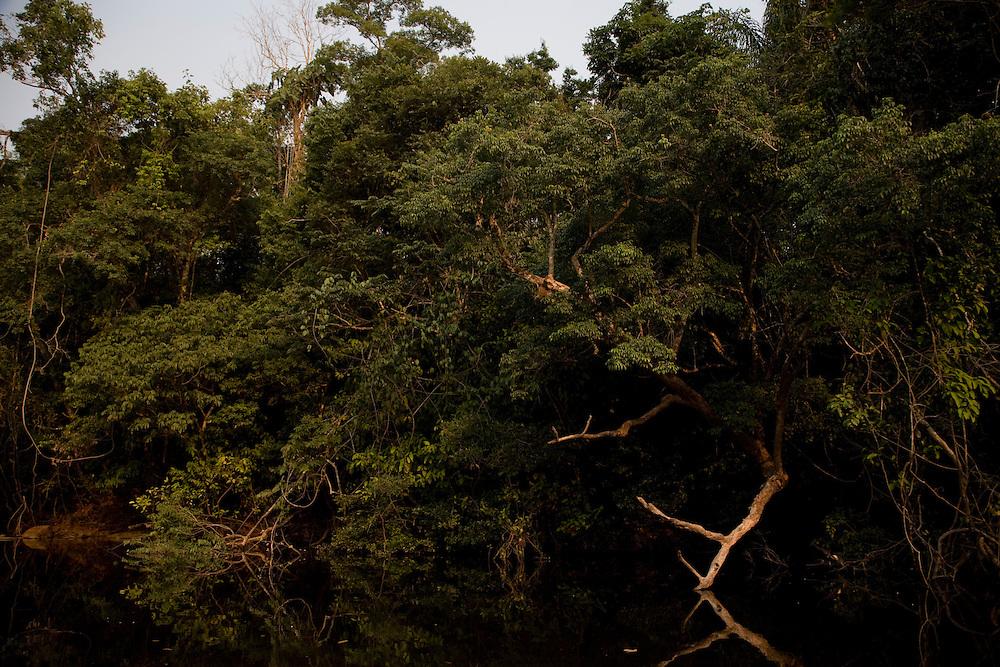 Mato Grosso, Brazil. September 30th  2007.  Cristalino State Park