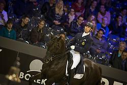 Devroe Jeroen, (BEL), Aaron<br /> Indoor Brabant - 's Hertogenbosch 2015<br /> © Hippo Foto - Dirk Caremans