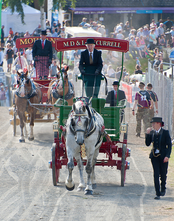 © Licensed to London News Pictures. 22/07/2019. Llanelwedd, Powys, UK. Heavy Horses leave the main ring after their display on the first day of the 100th Royal Welsh Agricultural Show. The Royal Welsh Agricultural Show is hailed as the largest & most prestigious event of its kind in Europe. In excess of 200,000 visitors are usually expected for the annual four day show period. The Royal Welsh Agricultural Society was founded in 1904. Photo credit: Graham M. Lawrence/LNP