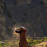 Annapurna - Harvest