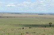Kenya, Masai Mara, Landscape