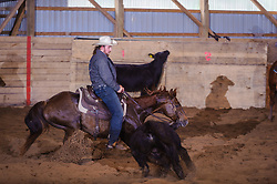 May 21, 2017 - Minshall Farm Cutting 4, held at Minshall Farms, Hillsburgh Ontario. The event was put on by the Ontario Cutting Horse Association. Riding in the 250 Novice Rider Class is James Cook on Dual Peps Tom Cat owned by the rider.