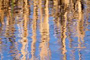 Fall Water Reflections.<br /> -Savannah, GA