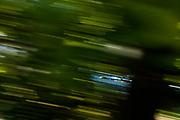 June 28 - July 1, 2018: IMSA Weathertech 6hrs of Watkins Glen. 33 Mercedes-AMG Team Riley Motorsports, Mercedes-AMG GT3, Ben Keating, Luca Stolz, Jeroen Bleekemolen