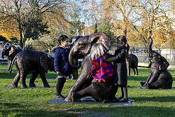 © Licensed to London News Pictures. 04/12/2019. London, UK. 4 years old Georgiana Chubb (R) and 5 years old Rosalind Cheung (L) from Hampden Gurney Primary School put a blanket on a sculpture of an elephant in at Marble Arch during an unveiling of life-sized herd of 21 bronze elephants.<br /> The sculpture is the largest such depiction of an elephant herd in the world and is intended to draw attention to the plight of this species that could be extinct on current trends, by 2040. Each elephant in the sculpture is modelled after a real orphaned animal currently in the care of the Sheldrick Wildlife Trust. Left behind by poachers and other sources of human-wildlife conflict these animals have been raised by the trust in an effort to secure the future of the species. The herd will be displayed until 4 December 2020. Photo credit: Dinendra Haria/LNP