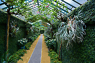 Official Opening of the Royal Greenhouse of Laeken