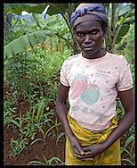 Rwanda, février 2004. Une veuve rescapée du génocide de 1994. Elle vit seul depuis.