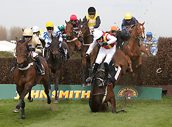 LIVERPOOL, ENGLAND - Friday, April 9, 2010: Khachaturian falls at a fence and unseats his jockey Jason Maguire  during the second day of the Grand National Festival at Aintree Racecourse. (Pic by David Rawcliffe/Propaganda)
