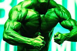 17.11.2013, VAZ, St. Poelten, AUT, IFBB, Classic Bodybuilding Weltmeisterschaft, im Bild Bodybuilderfeature, Hulkfeature // during the IFBB Classicbodybuilding Championship, Austria 2013/11/17. EXPA Pictures © 2013, PhotoCredit: EXPA/ Sascha Trimmel