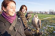 Traversetolo (Parma) - Diletta Bianchini e Jessica Ziveri hanno deciso di dedicare la propria vita all'antica arte della falconeria. Una scelta che ha cambiato radicalmente, nel giro di pochi anni, il loro stile di vita, trovando nuovi compagni con cui instaurare legami profondi: i rapaci.