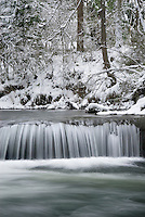 Fresh winter snow along Whatcom Creek, Bellingham Washington USA