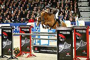 Gerben Morsink - Carthino Z<br /> KWPN Hengstenkeuring 2013<br /> © DigiShots