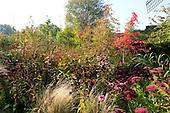 Natural Garden 1021