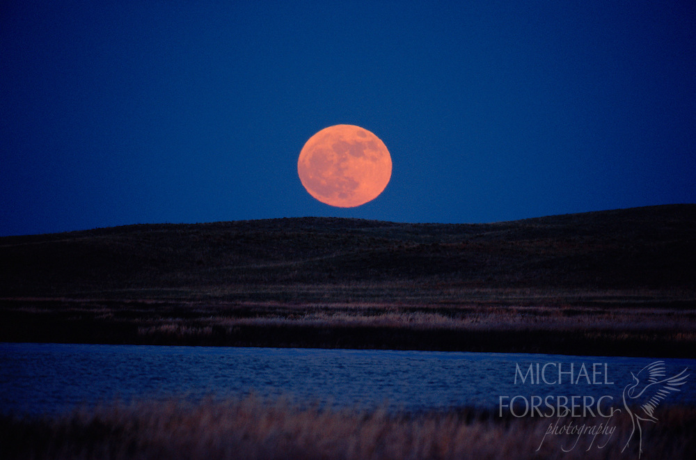 Full moon in the Nebraska Sandhills