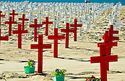 Arlington, West, Memorial, Santa Monica, Beach, Ca, Veterans Crosses Wood, Cross, Star of David, crescents , and Flag, draped coffins, Los Angeles CA; Travel; Destination; View; Unique; Quality
