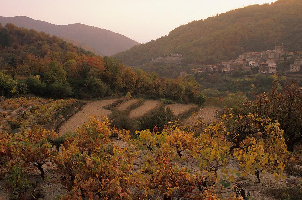France, Languedoc Roussillon, Gard (30), Cevennes, Saint-Martial