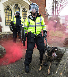 © Licensed to London News Pictures . 30/01/2016 . Dover , UK . Police dog units separate the two demonstrations as they clash . Demonstrations by far-right groups (including The National Front , The North West Infidels and The South East Alliance ) and , opposing them , anti-fascists , close to the port of Dover in Kent . Photo credit : Joel Goodman/LNP
