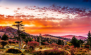 A gorgeous sunrise captured at Rhododendron Gap along the Appalachian Trail in Virginia, near Grayson Highlands State Park.